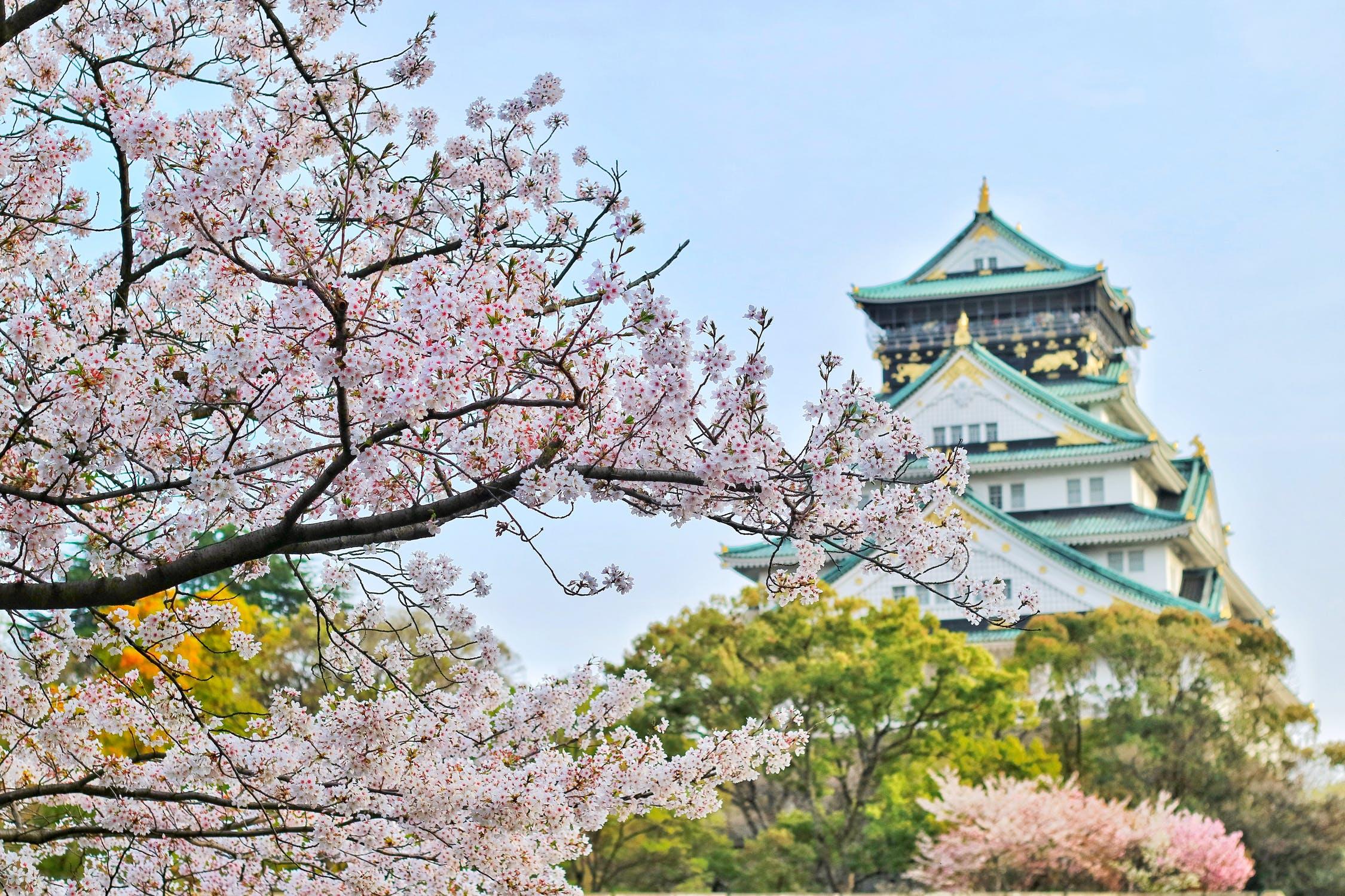 Adequaatheidsbesluit Japan
